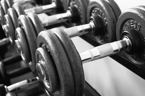weight  - training